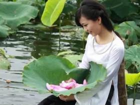 越南女人與越南蓮花文化